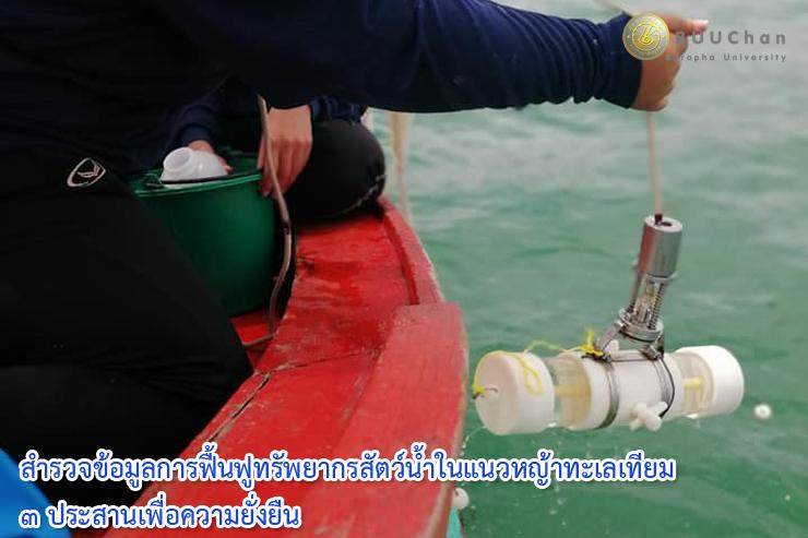 สำรวจข้อมูลการฟื้นฟูทรัพยากรสัตว์น้ำในแนวหญ้าทะเลเทียม